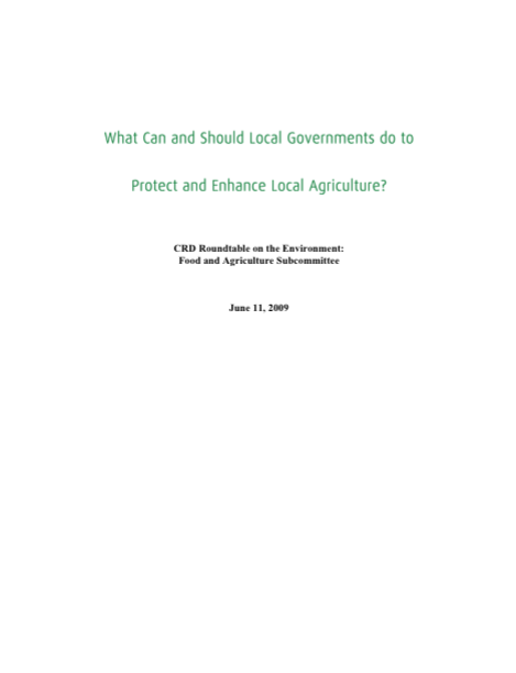(2009) What Can and Should Local Governments Do